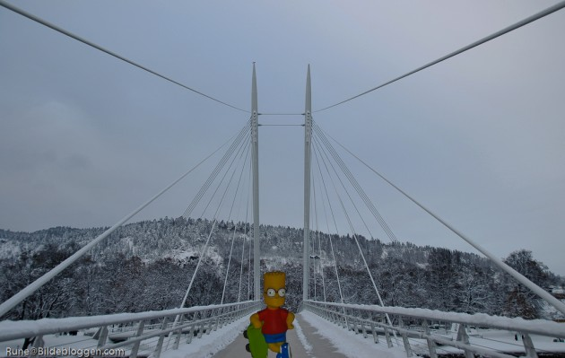 bart-i-drammen