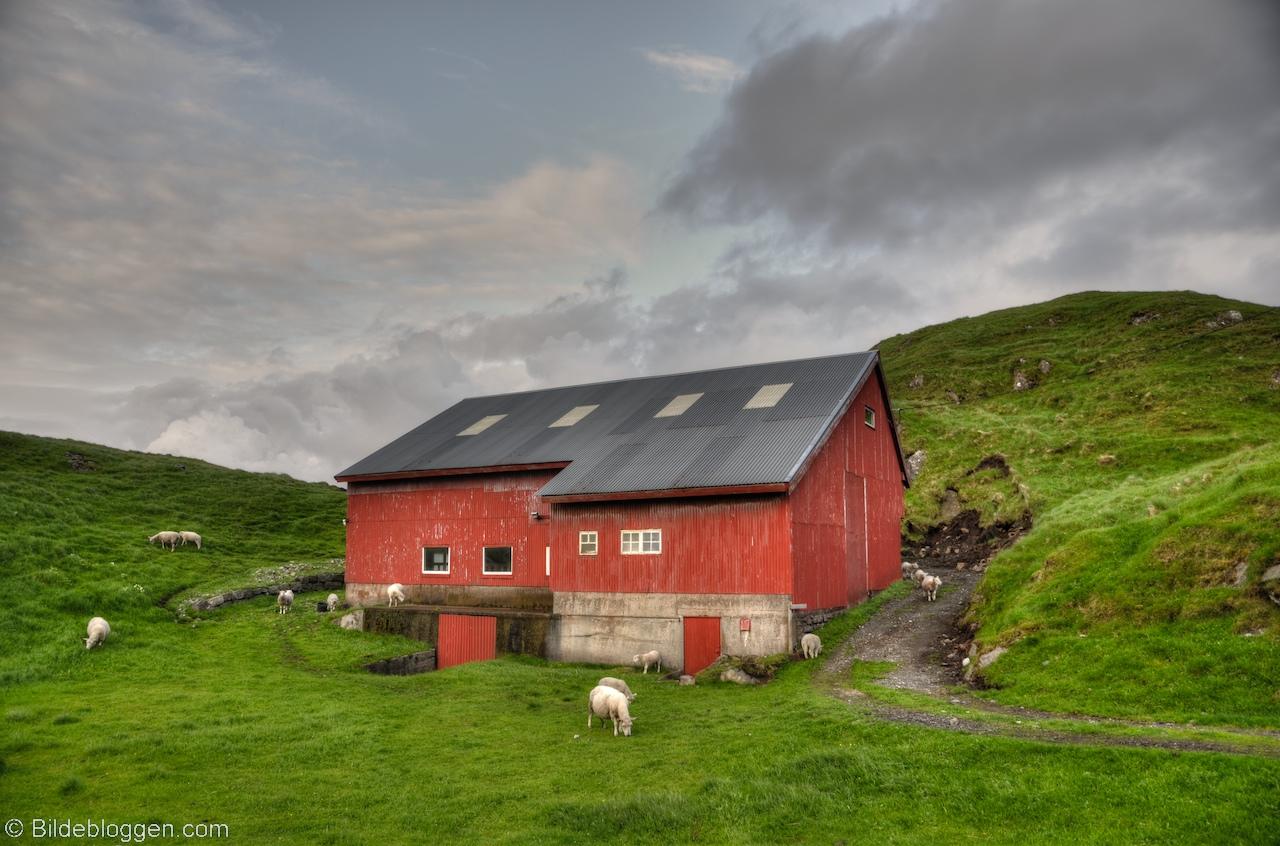 sextreff sogn og fjordane Holmestrand