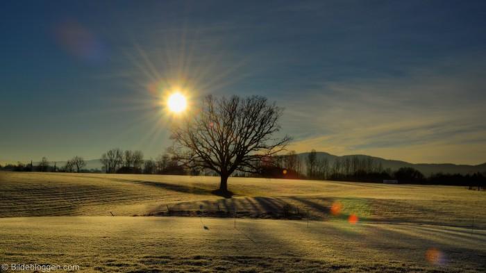 Vinterdag, i følge kalenderen. 9.desember 2014